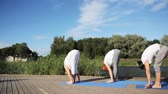 instrutor : group of people making yoga exercises outdoors Vídeos