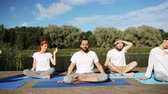 workout : group of people making yoga exercises outdoors Stock Footage