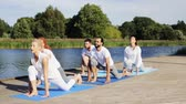 meditar : group of people making yoga exercises outdoors Vídeos