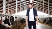 agricultura : man or farmer with cows in cowshed on dairy farm