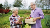 writing : senior couple with box of vegetables on farm