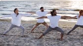 workout : group of people making yoga exercises on beach