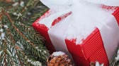 prezent : gift box and fir wreath with cones on snow