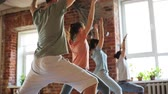instrutor : group of people making yoga exercises in gym