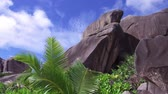 идиллический : beach with rocks and palm trees on seychelles