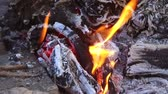 огонь : firewood burning in bonfire outdoors
