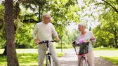 fixní : happy senior couple riding bicycles at summer park