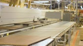 processamento : chipboards on conveyer at furniture factory
