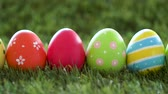 diferente : row of colored easter eggs on artificial grass Vídeos