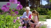 crescente : grandmother and girl planting flowers at garden
