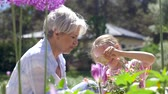 цветение : grandmother and girl planting flowers at garden