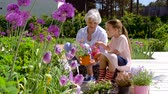 предподростковый : grandmother and girl planting flowers at garden