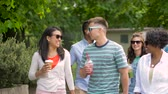 takeout : friends drinking coffee and juice walking in park Stock Footage