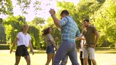 sulco : happy friends dancing at summer party in park Stock Footage