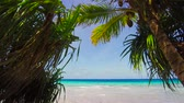 french : tropical beach with cocopalms in french polynesia