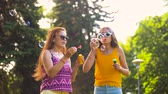 blower : teenage girls blowing bubbles in summer park