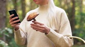 leccinum : woman with mushroom and smartphone in forest