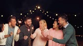 feline : happy friends with sparklers at rooftop party Stock Footage