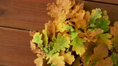 гайка : oak leaves in autumn colors on wooden table Стоковые видеозаписи