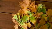 листва : oak leaves in autumn colors on wooden table Стоковые видеозаписи