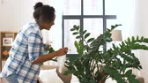 tamanho : happy woman cleaning houseplant at home