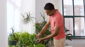 gartenbau : indian man taking care of houseplants at home
