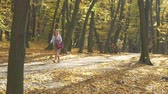 people walking in autumn park on sunny fall day. Slow motion.