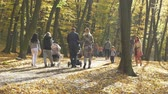 people walking in autumn park on sunny fall day. Mother with stroller in fall park. Vidéos Libres De Droits