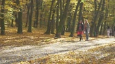 Two girls friend walking in autumn park on sunny fall day. Slow motion.