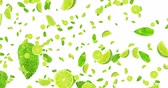 digital animation fruits citrus lime slices and mint leaf flying on white background, loop seamless. 4K and 1080 resolution. Cocktail mojito ingredients, party concept Stok Video