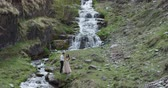 Young beautiful wedding couple standing near the waterfall. Wedding day. Slow motion Stock Footage