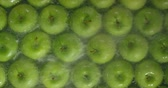 industrial background : Fresh Green Apples being washed by water. Washing Fruits.
