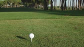 golfe : young healthy golfer hitting golf shot with club on course