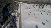 congelamento : aerial footage of road through winter forest Stock Footage