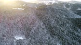 lamacento : aerial footage of winter forest