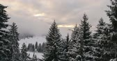 розовый : winter sunrise with fresh snow in alps mountains on fresh morning