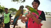 papagaio : Jakarta, Indonesia - January 5, 2019: A group of parrot fans are training their pets. Vídeos