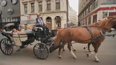 desenhado : Vienna, Austria - August 13, 2018: Horse-driven carriage at Hofburg palace in Vienna, Austria