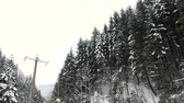 harikalar diyarı : Driving on the road next to pine trees in winter mountains. Slow motion
