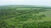 nobody : Aerial drone shot of dense forest and other wilderness. Green landscape