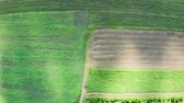nobody : Top down aerial footage of green fields in summer day
