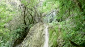 high power : Slow motion shot of beautiful waterfall in the nature on the mountains Stock Footage
