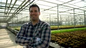 Young agronomist in a greenhouse with growing green salad. Farm workers in the background harvesting.