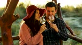 vinho : Couple having a romantic moment, tasting some white wine in beautiful sun flares. Shot in 6K on cinema camera Stock Footage