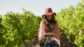 виноград : Woman with a basket of grapes in hands laughing to the camera. Slow motion footage Стоковые видеозаписи