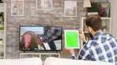 socialisation : Back view of bearded man sitting on couch holding tablet with green screen. Man swiping on tablet.