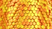 buňka : Background of Hexagons