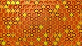 petek : Background of Hexagons