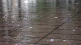 tinted : Raindrops in a puddle on the sidewalk Stock Footage
