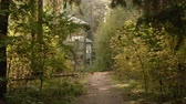 abandoned alley : Walkway to the deserted house in the forest. Autumn daytime. Smooth dolly shot